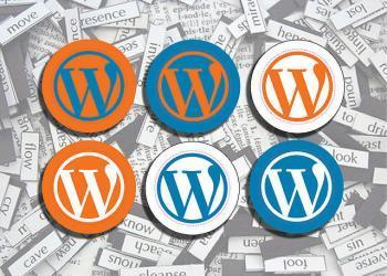 月間13,500PVブロガー/Wordpressで作る「稼ぐ」ブログ